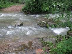 Apa de munte